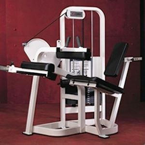 Cybex V2 Seated Leg Curl